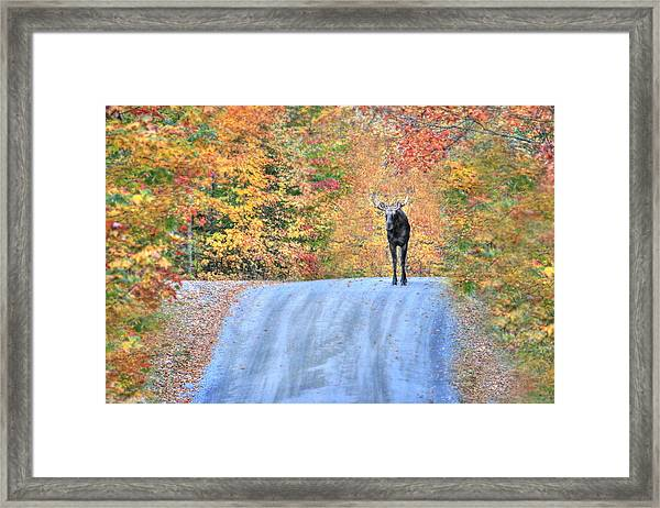 Moments That Take Our Breath Away - No Text Framed Print