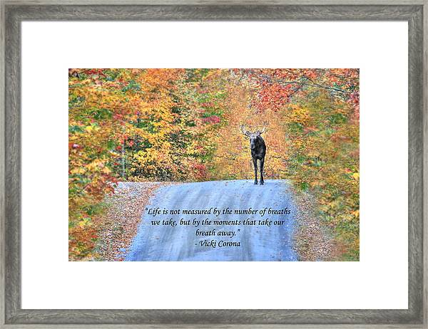 Moments That Take Our Breath Away Framed Print
