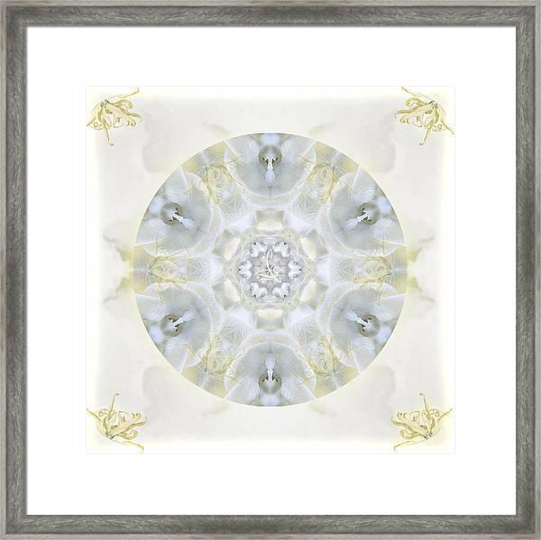 Monoi Framed Print