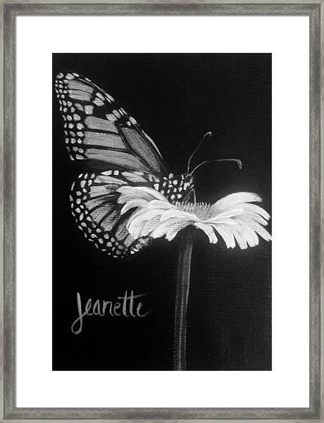 Monarch On A Daisy Framed Print