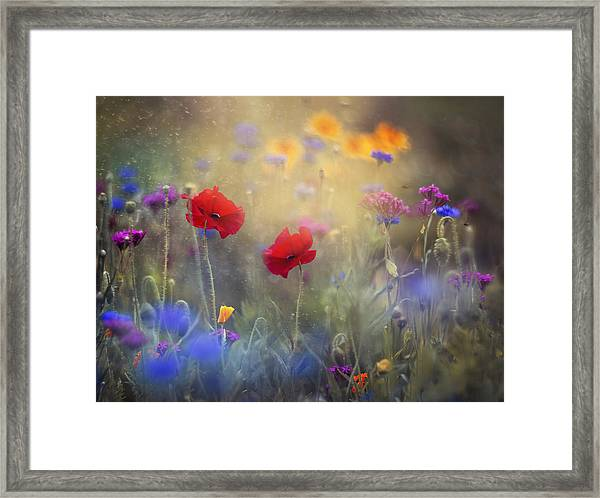 Monet's Garden I Framed Print