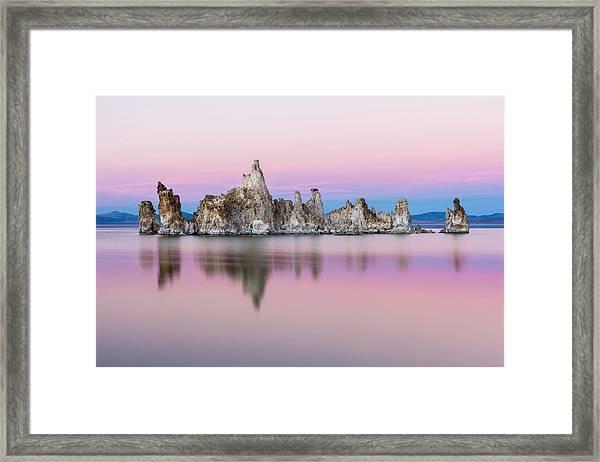 Mono Pastels Framed Print