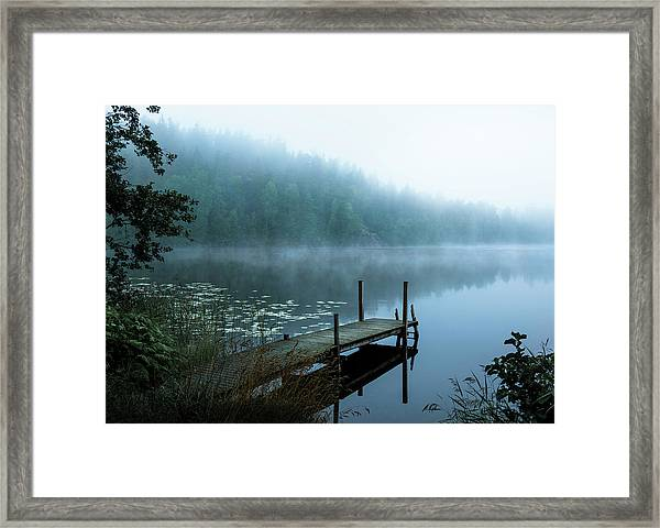 Moody Morning Framed Print
