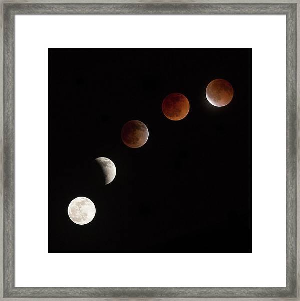 Moon At Play Framed Print