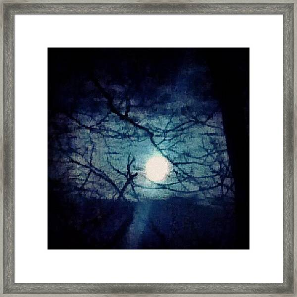 Moon Framed By Tree Branches Framed Print