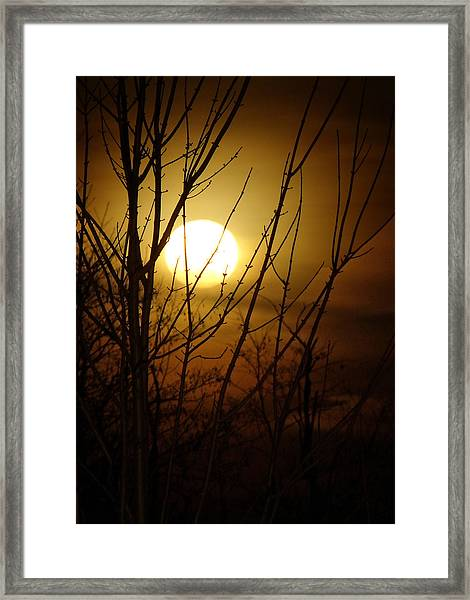 Moon I Framed Print by Sarah Boyd