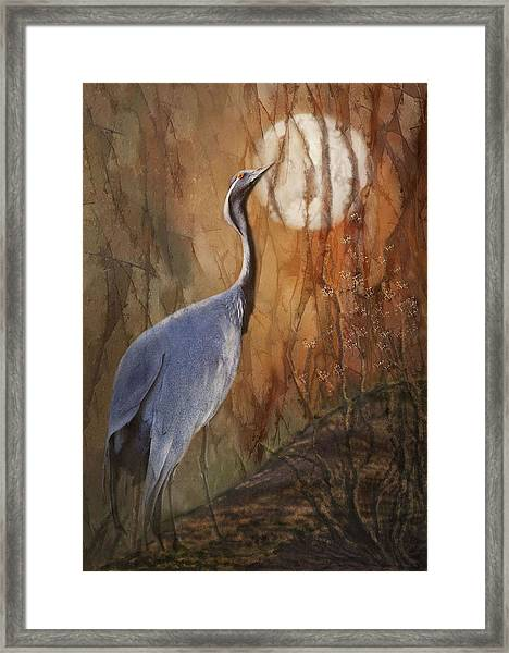Moon Watch Framed Print