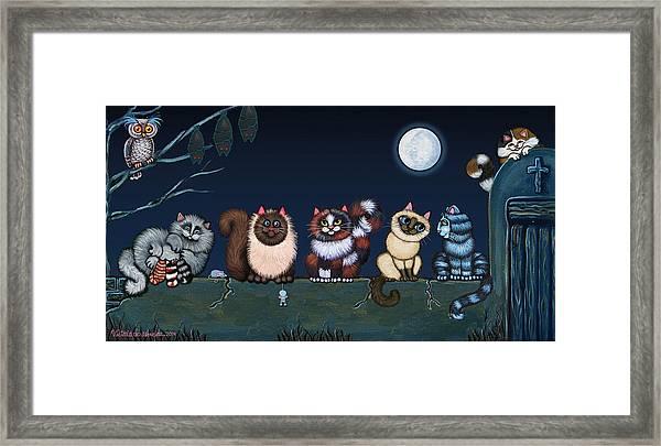 Moonlight On The Wall Framed Print