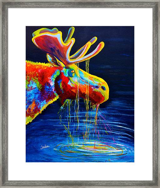 Moose Drool Framed Print