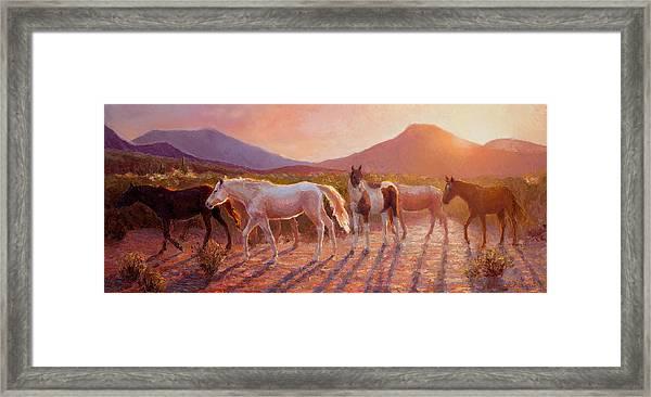 More Than Light Arizona Sunset And Wild Horses Framed Print