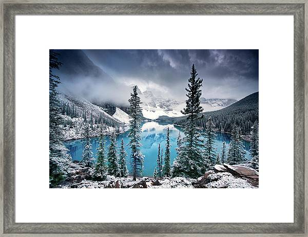 Morning Blues Framed Print by Trevor Cole