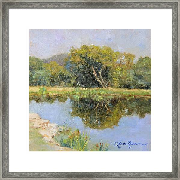 Morning Calm In Texas Summer Framed Print