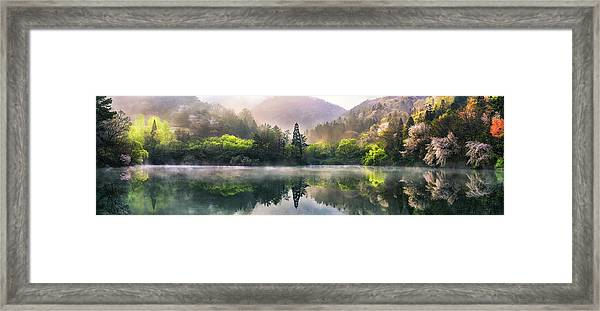 Morning Calm Framed Print by Tiger Seo