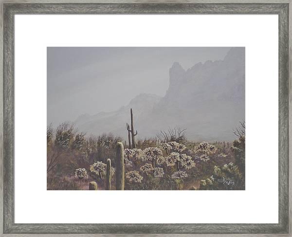 Morning Desert Haze Framed Print