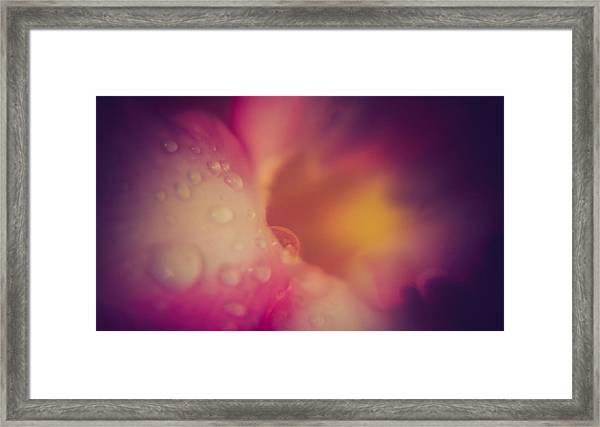 Morning Dew - East Framed Print