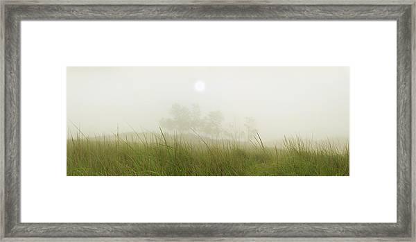 Morning Fog On The Dunes Framed Print