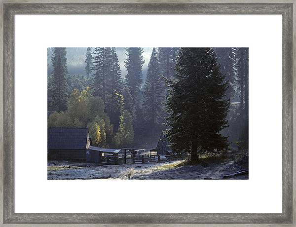 Morning Frost At Dawn Framed Print