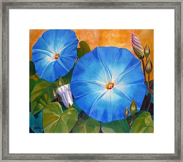 Morning Glories Framed Print