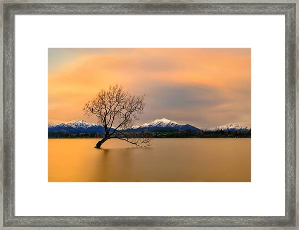 Morning Glow Of The Lake Wanaka Framed Print