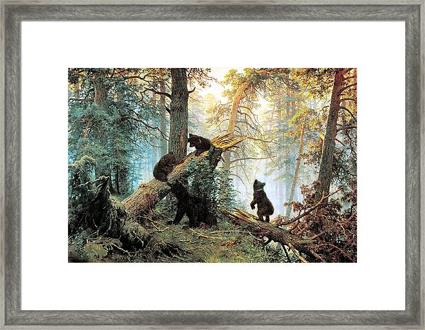 Morning In A Pine Forest Framed Print