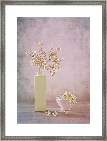 Morning Light Framed Print by Sophie Pan