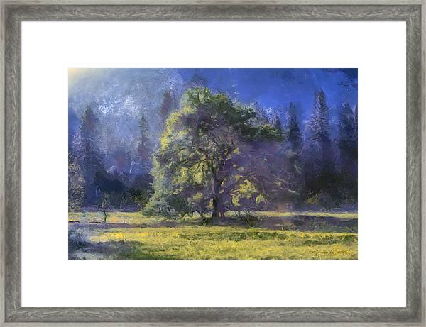 morning light Yosemite Valley Framed Print