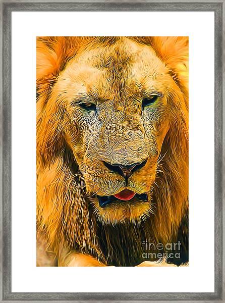 Morning Lion Framed Print