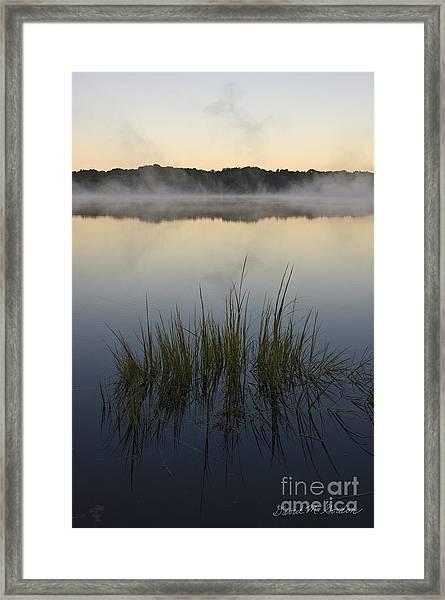 Morning Mist At Sunrise Framed Print by David Gordon
