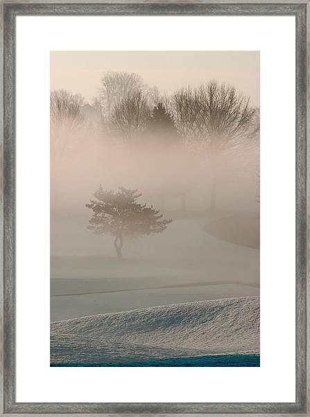 Morning Mist Framed Print