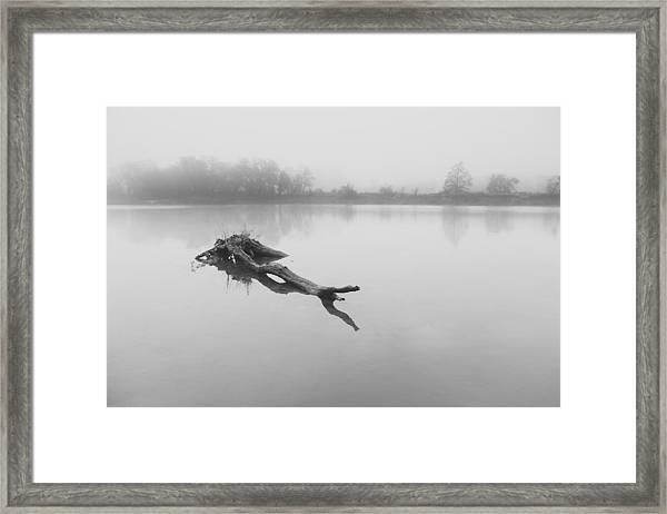 Morning Mood Framed Print
