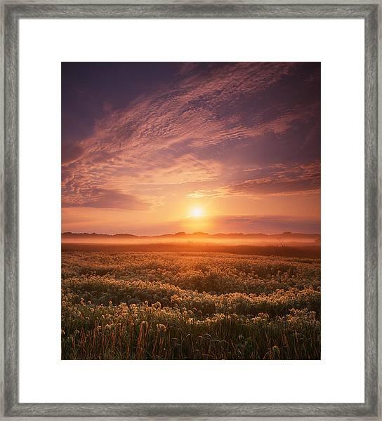 Morning On The Fen Framed Print