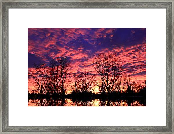 Morning Reflection Framed Print