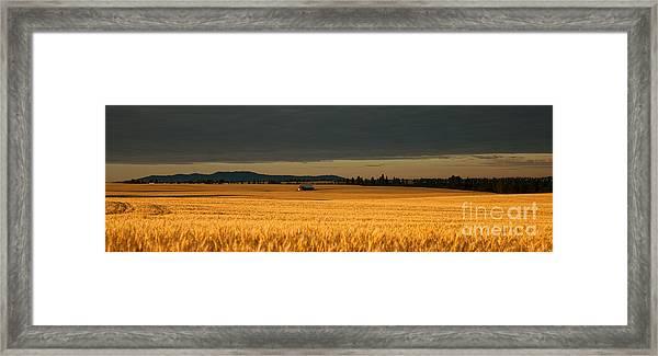 Morning's Glow Framed Print