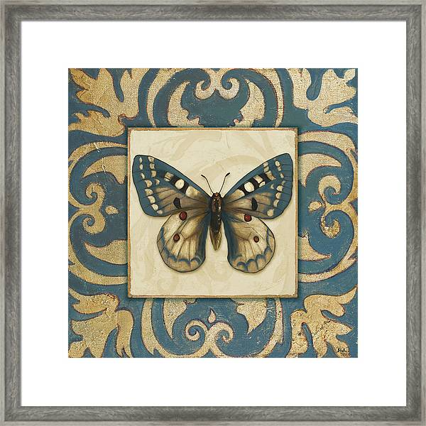 Moroccan Butterfly I Framed Print
