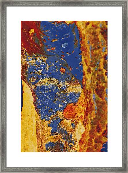 Mortal Bleu Flambe Framed Print