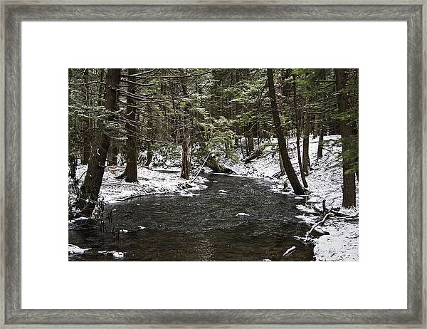 Moscow High School Nature Trail Framed Print
