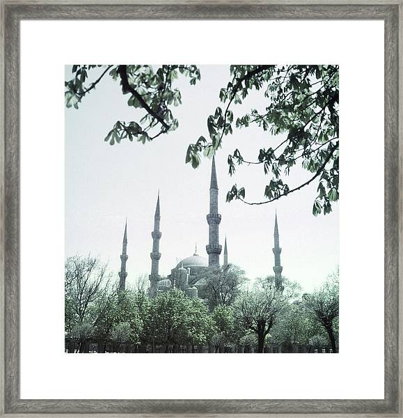 Mosque Behind Trees In Turkey Framed Print