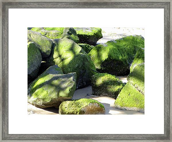Framed Print featuring the photograph Moss On The Rocks by Bob Slitzan