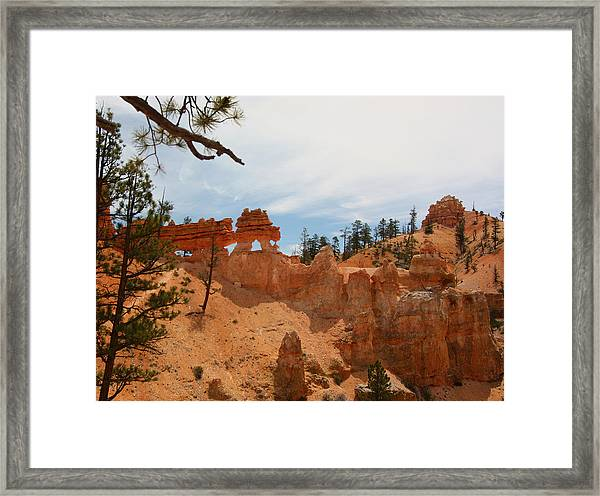 Mossey Creek Trail Arches Framed Print