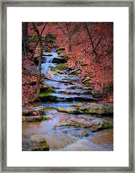 Mossy Creek Framed Print
