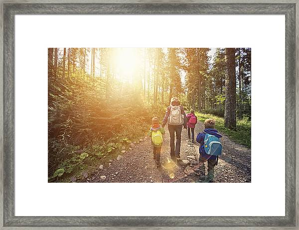 Mother And Kids Hiking In Sunny Forest Framed Print by Imgorthand
