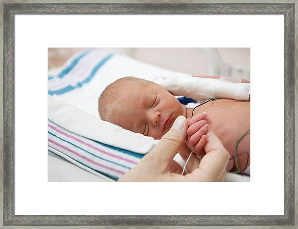 Mother Holdind Hand Of A Premature Baby In Incubator Framed Print by Cdwheatley