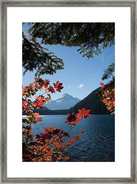 Mount Hood In Autumn Framed Print by W Chris Fooshee