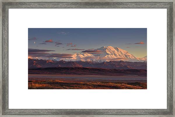 Mount Mckinley - Denali National Park Framed Print