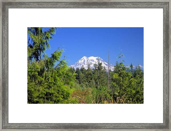 Mount Rainier Framed Print