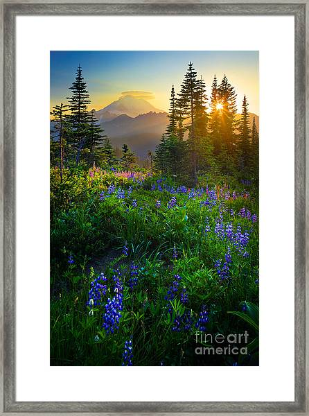 Mount Rainier Sunburst Framed Print