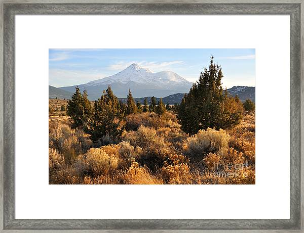 Mount Shasta In The Fall  Framed Print