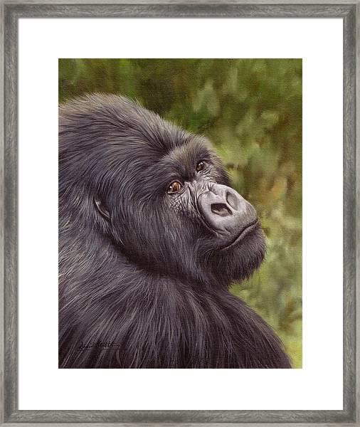 Mountain Gorilla Painting Framed Print