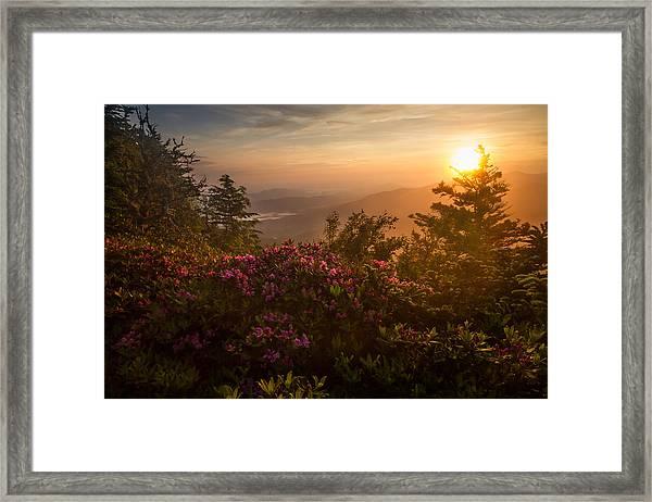 Mountain Morning Framed Print