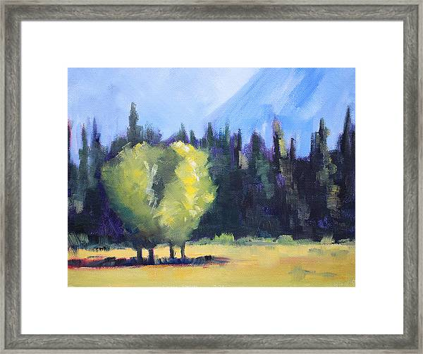 Mountain Shadows Landscape Painting Framed Print